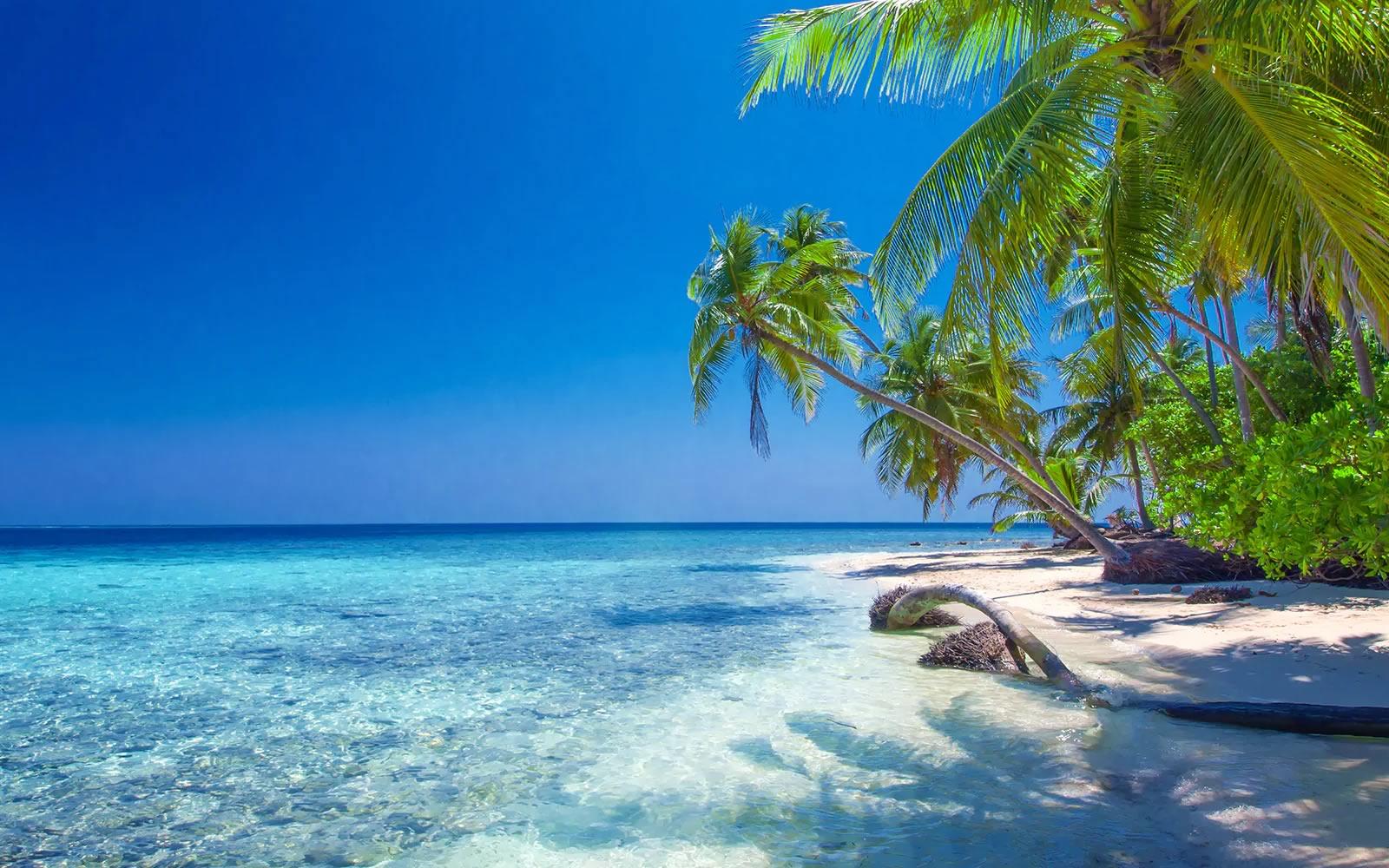 Turismo nei Caraibi: il CTO Allied Board